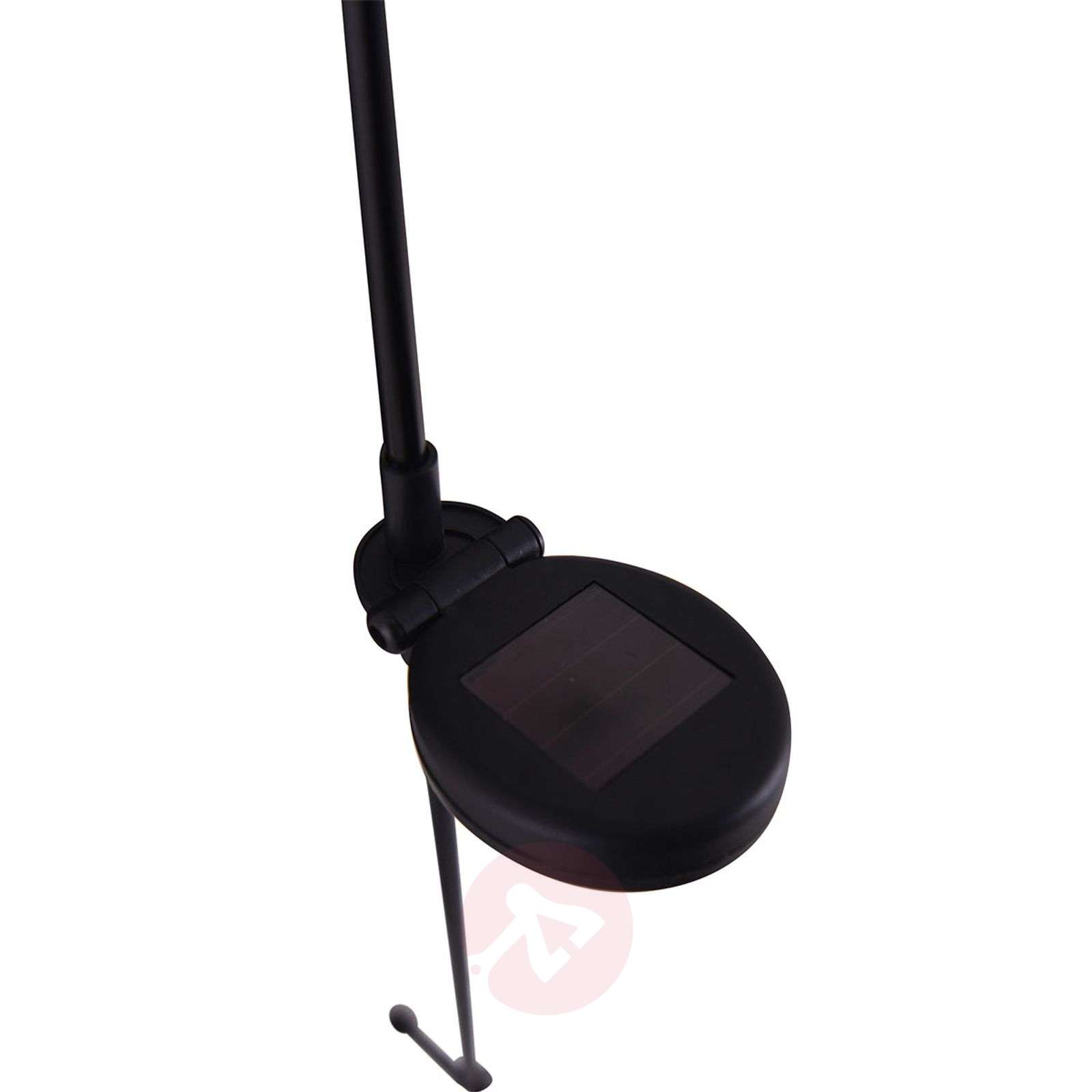 Aideen decorative LED solar light, ground spike-7000942-01