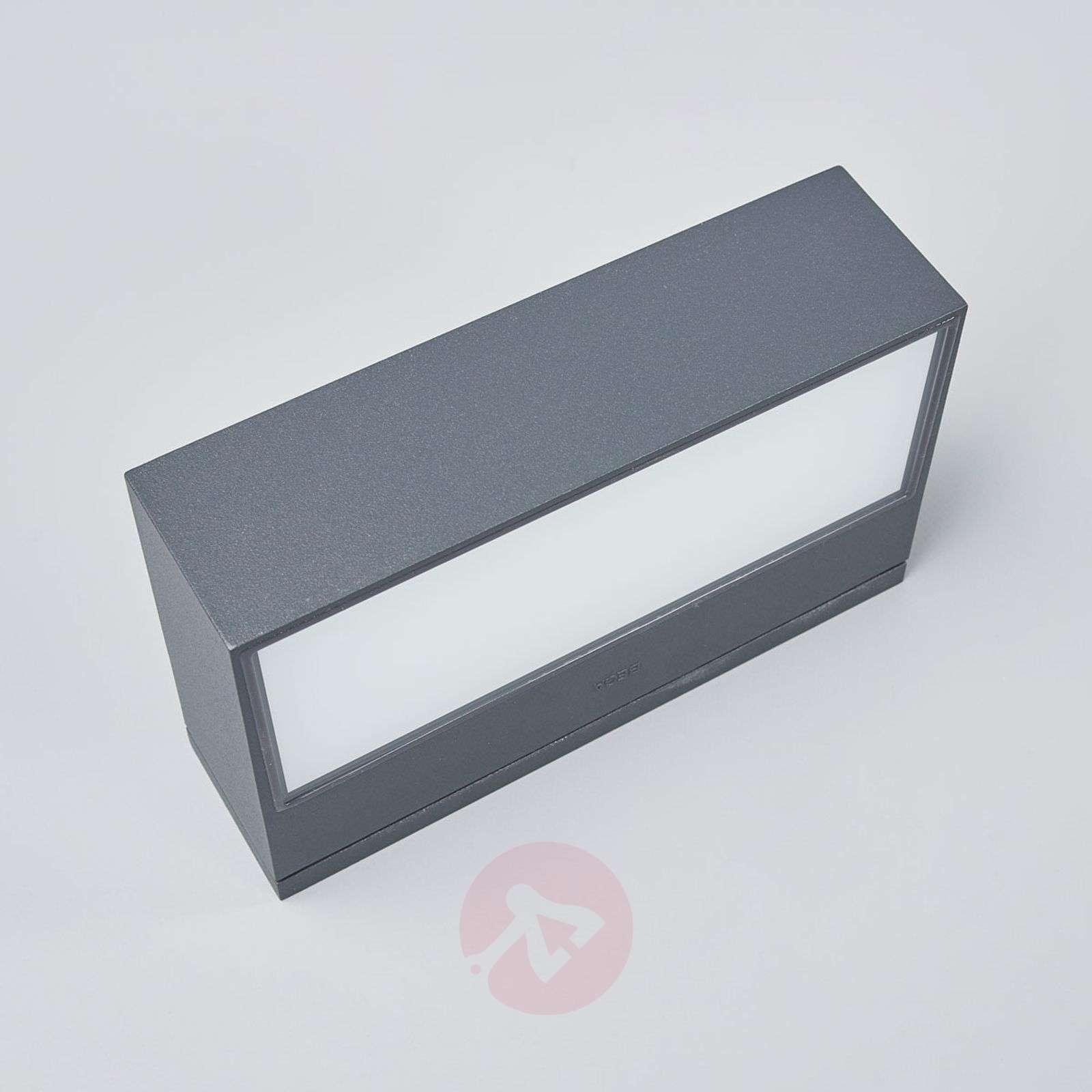 Bega LED outdoor wall lamp Elton-1566015-01