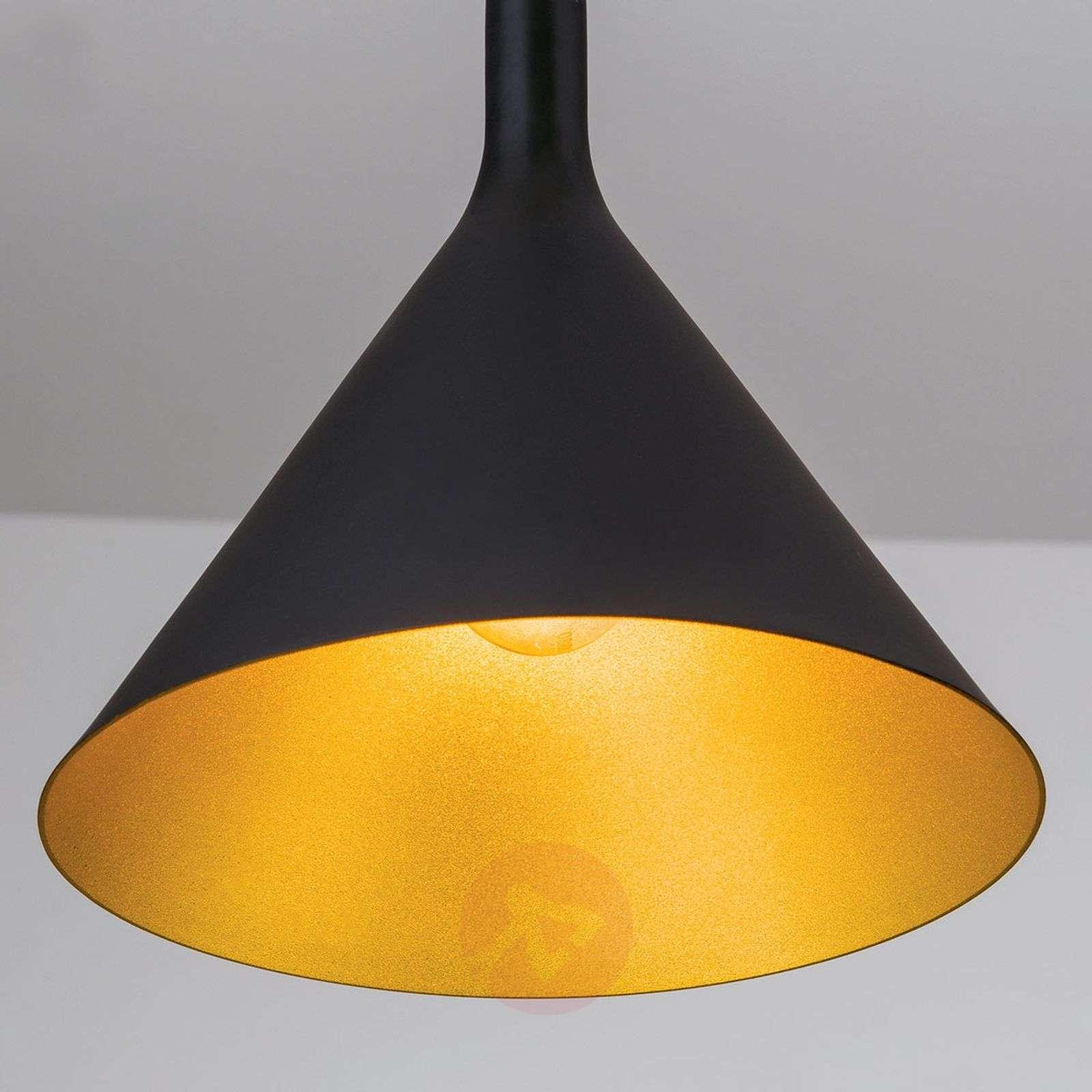 Black outside, gold inside pendant light Gunda-7255355-01