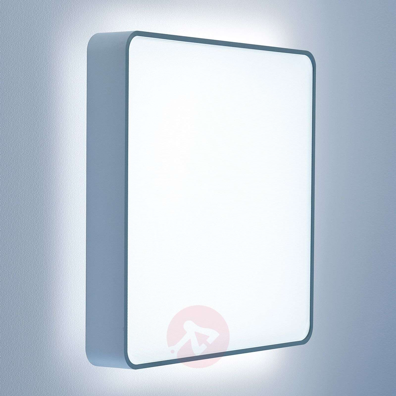 Caleo X2 square LED wall light-6033424X-02