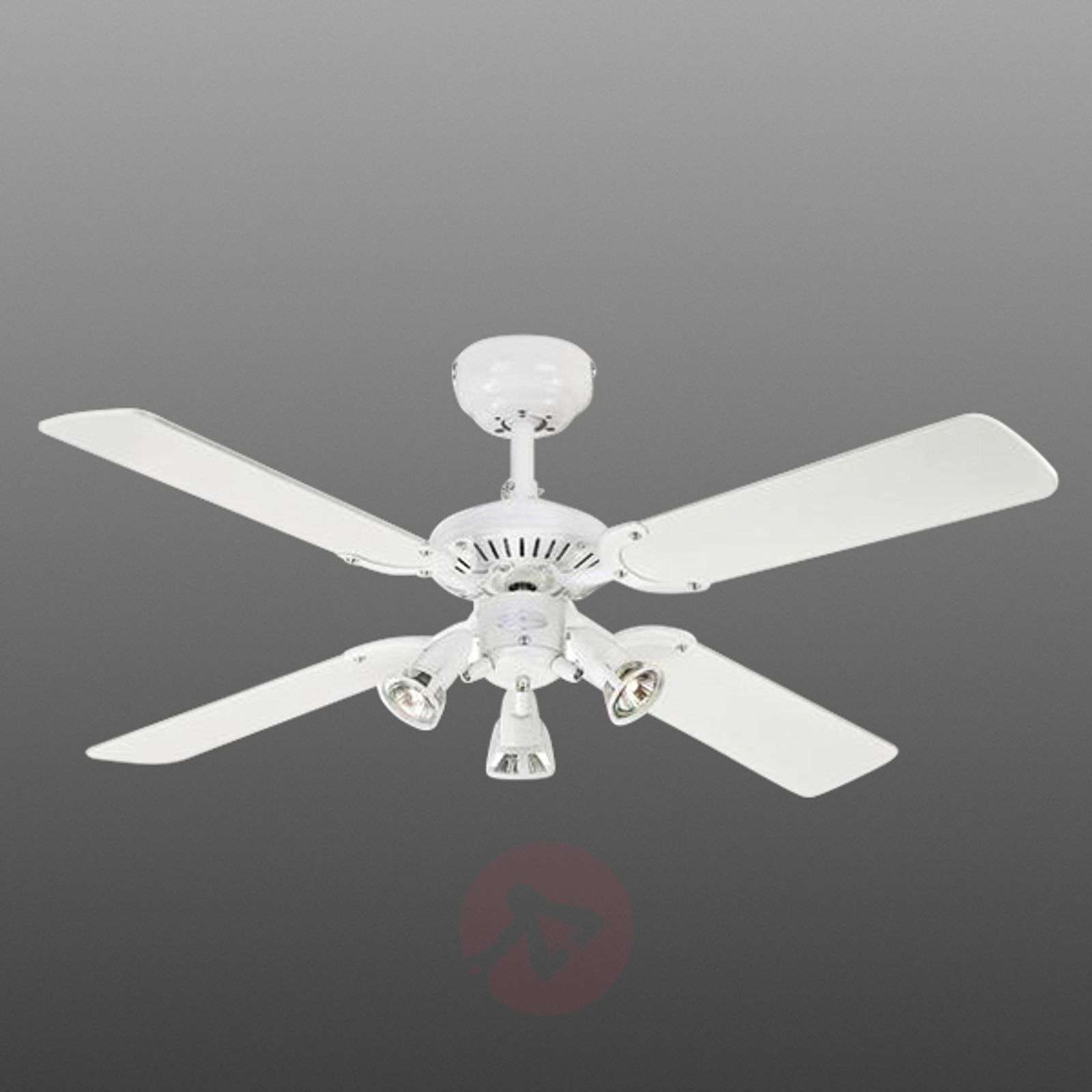 Ceiling fan Princess Euro with 3 bulbs-9602279-01