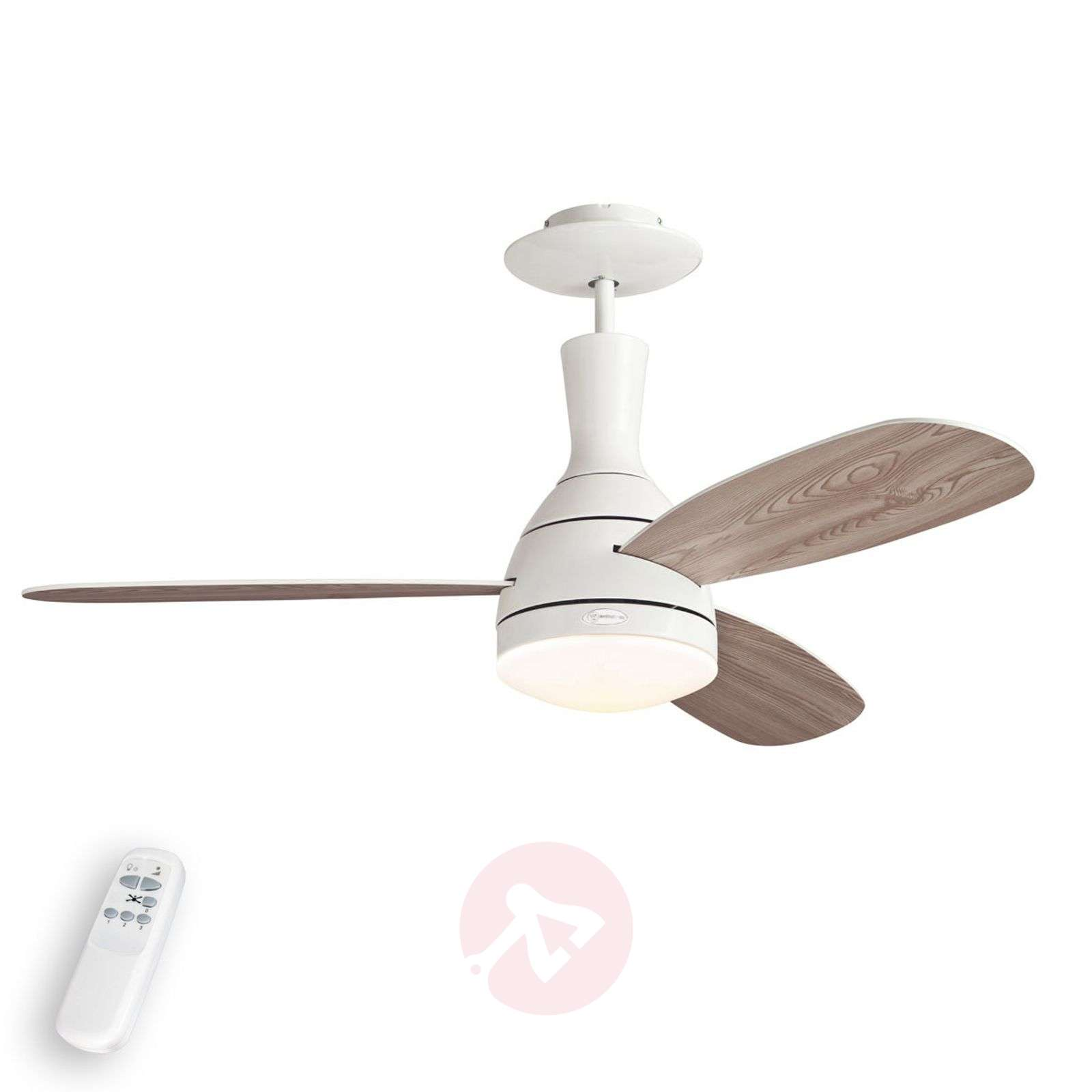 Cumulus Ceiling Fan For Summer And Winter 9602248 01