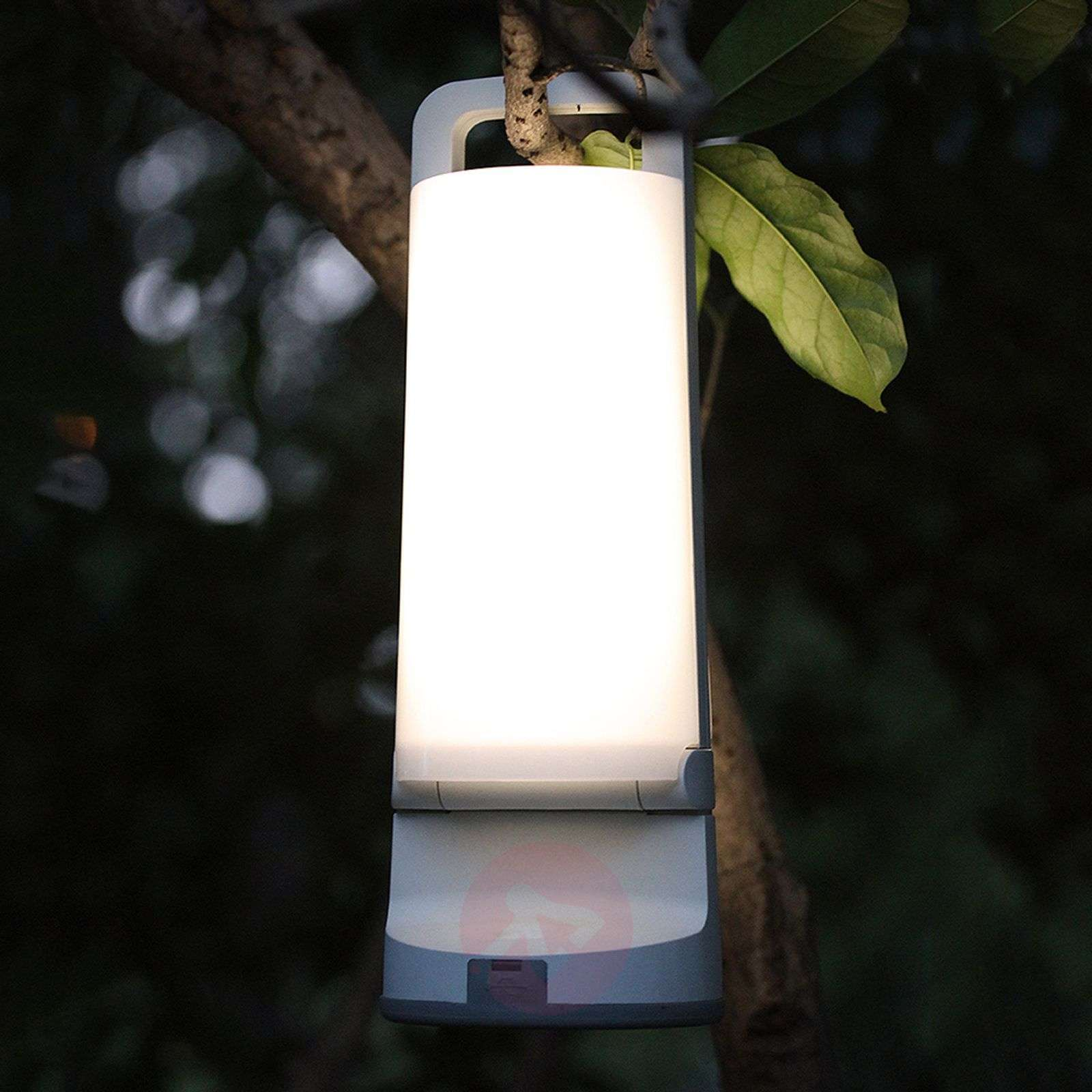 ... Dragonfly A Solar Table Lamp For Outdoors 3006242 01 ...