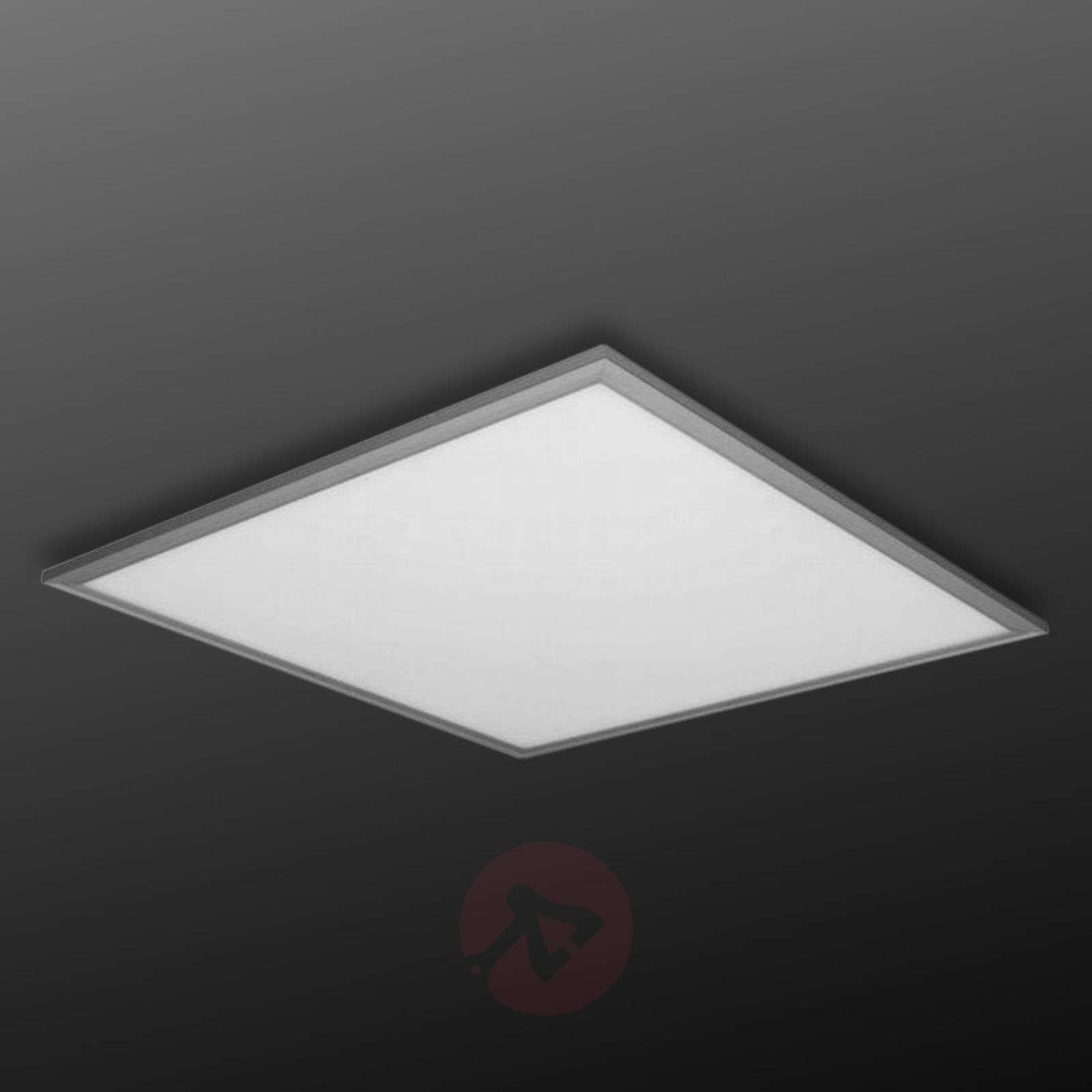 Edge all-in-one LED panel, cool white DALI-3002133-01