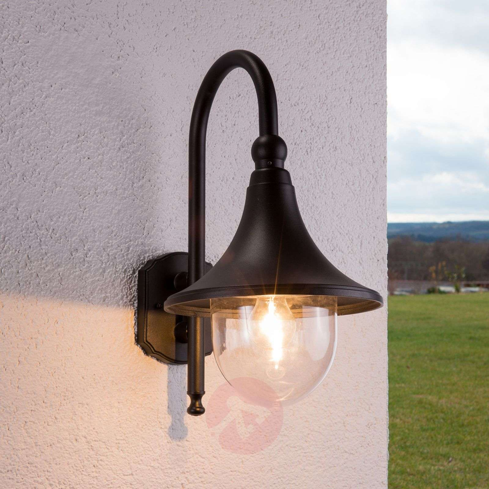 Elegant Daphne outdoor wall light in black-9611081-01