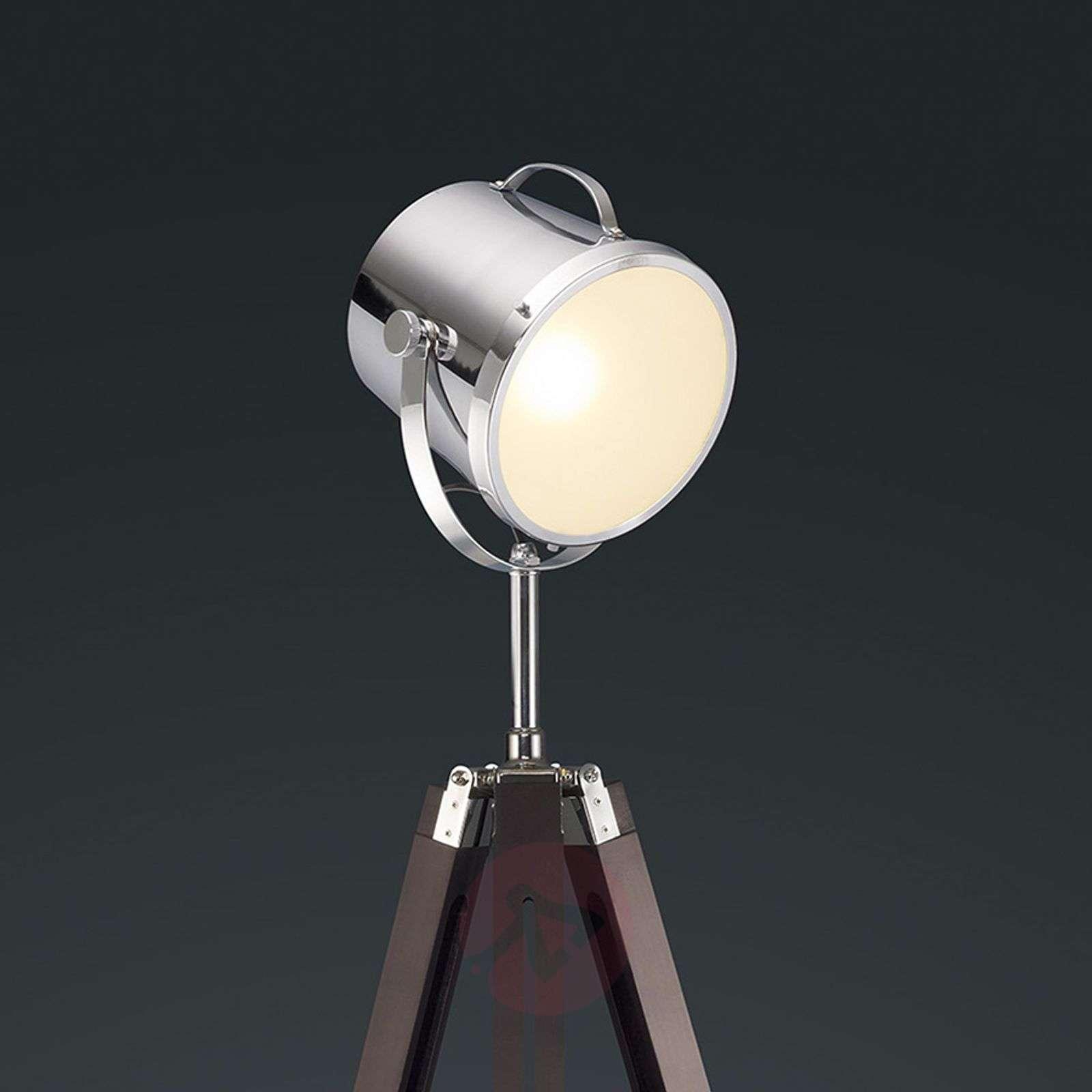 Floodlight-style Antwerp floor lamp-9005086-01