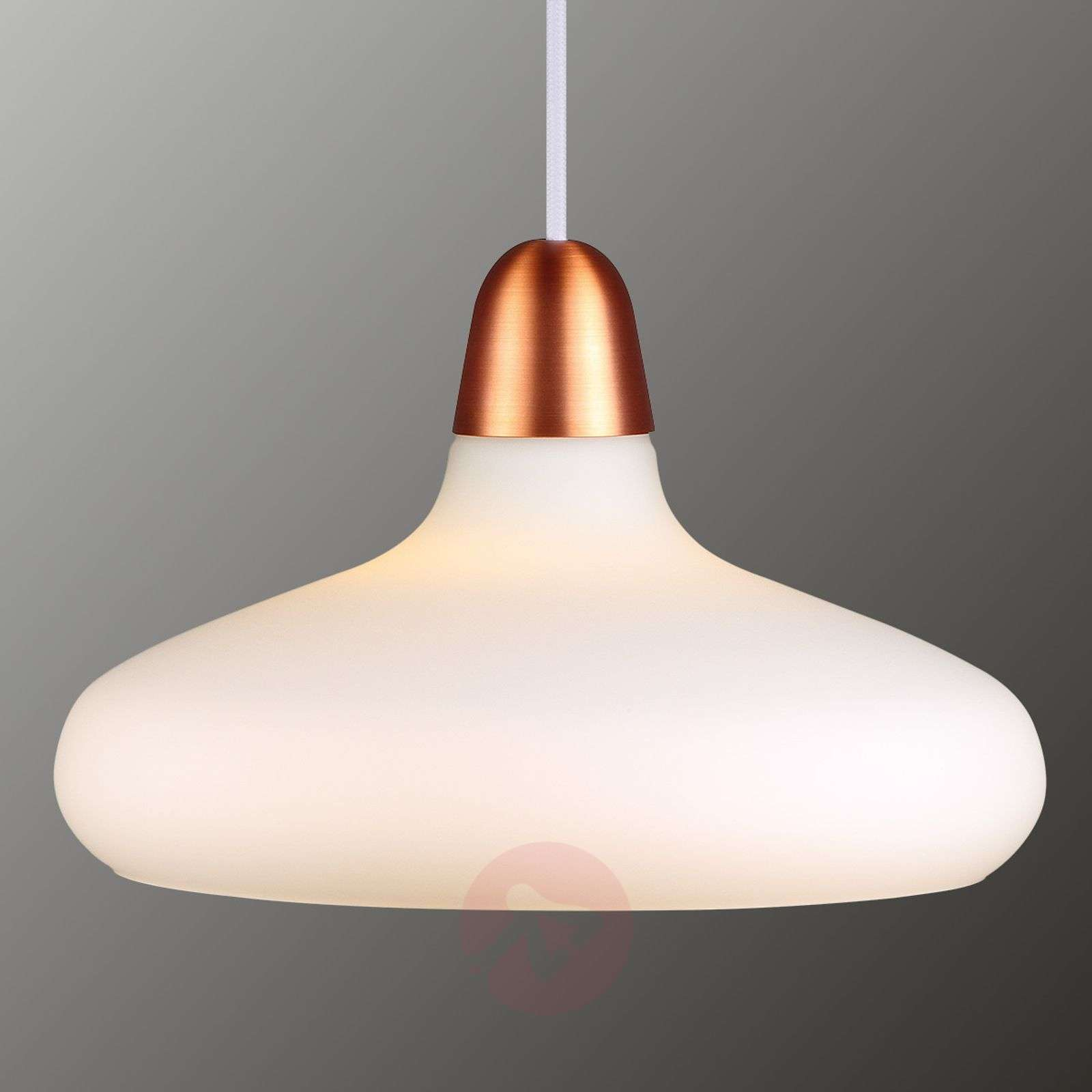 Glass pendant lamp Bloom, 29 cm-7005911-01