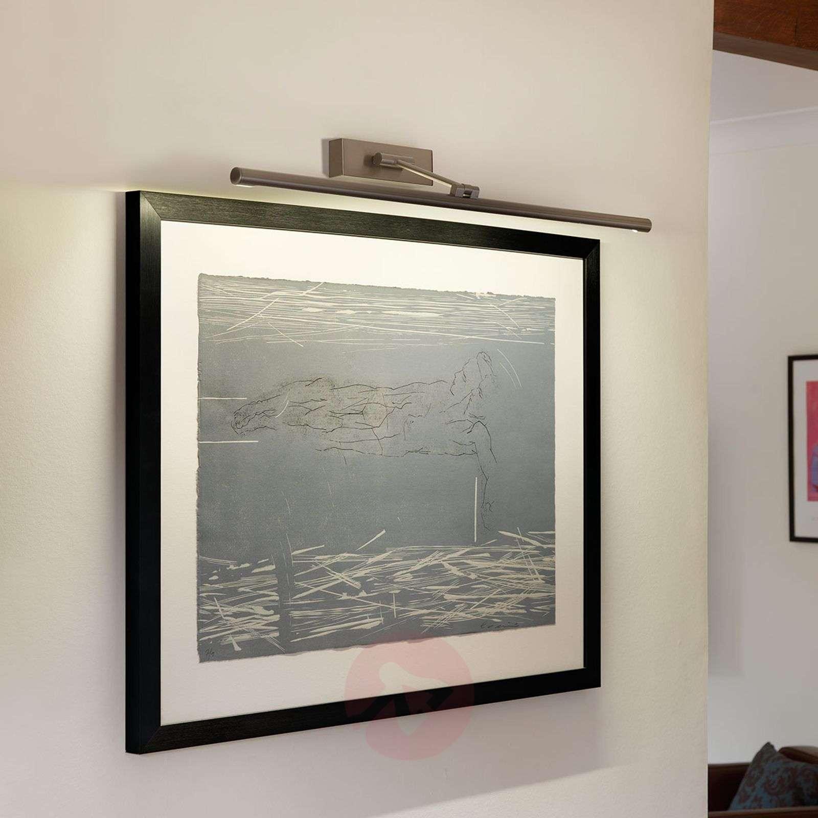 Goya 760 LED Picture Light Beautiful-1020474X-03