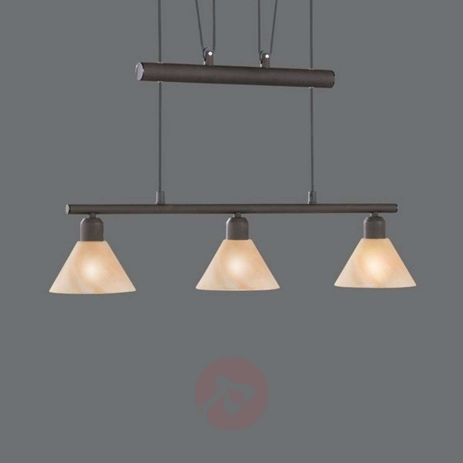Height-adjustable hanging light Zug-9003027X-01