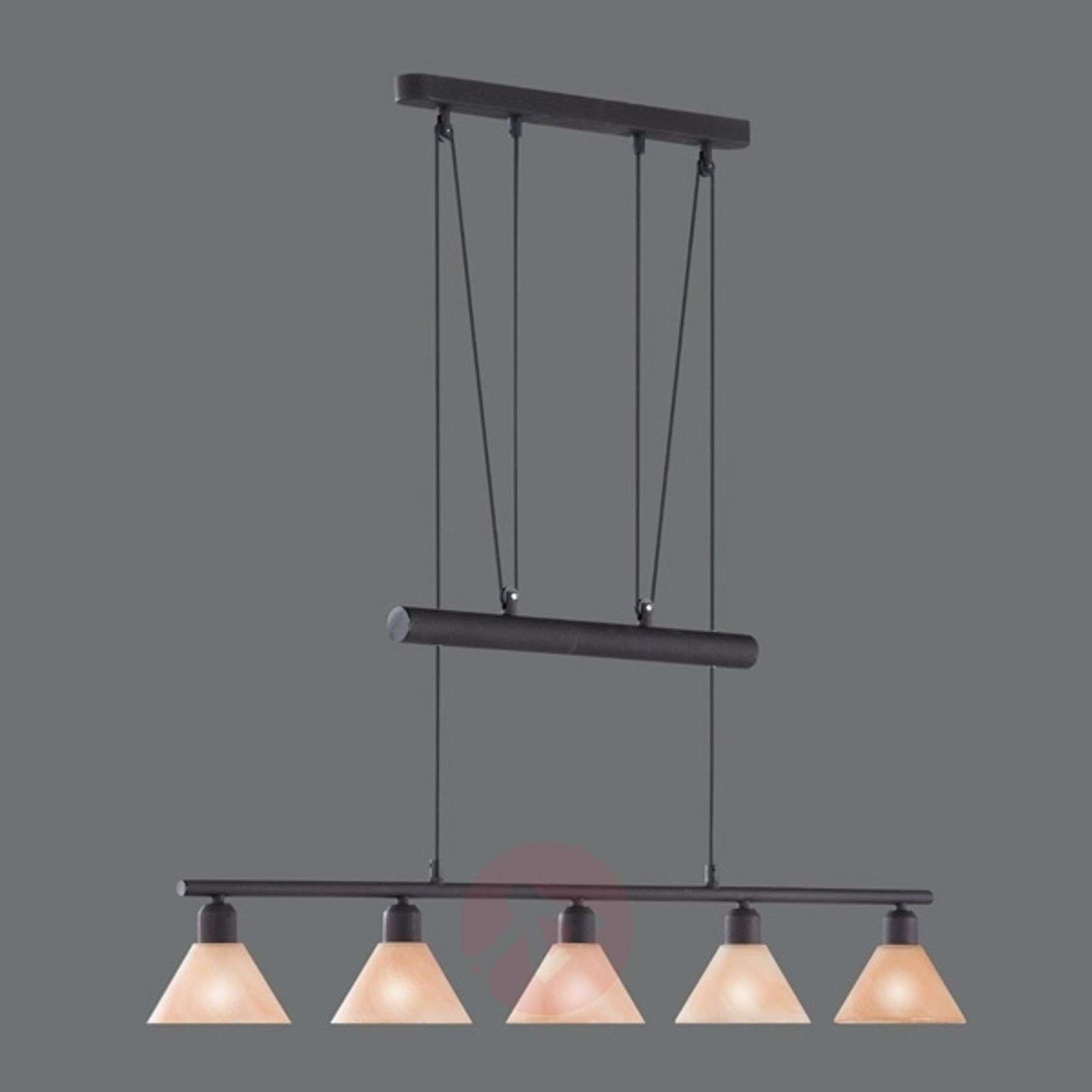 Height-adjustable hanging light Zug-9003027X-01