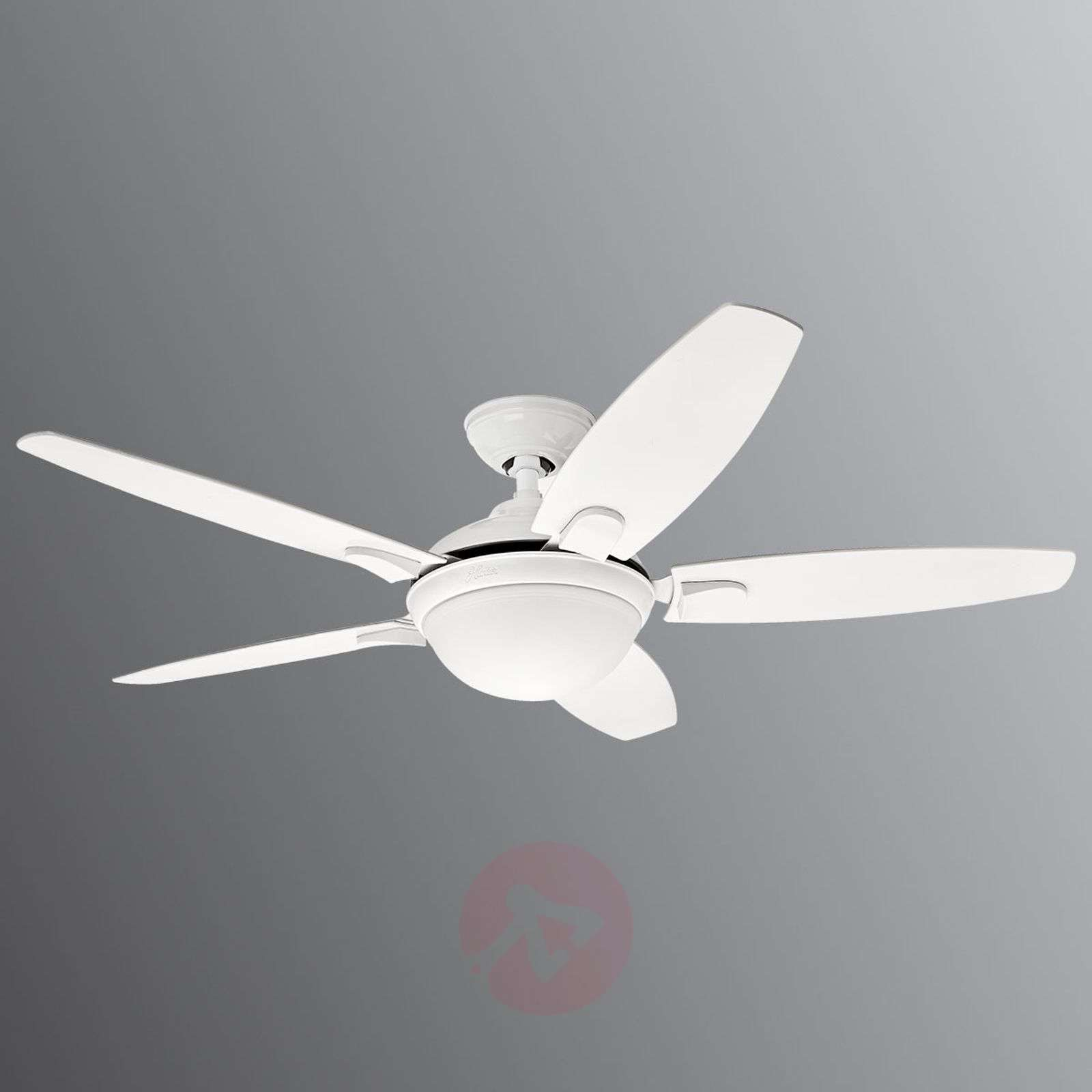 Hunter Contempo ceiling fan with light-4545017-01