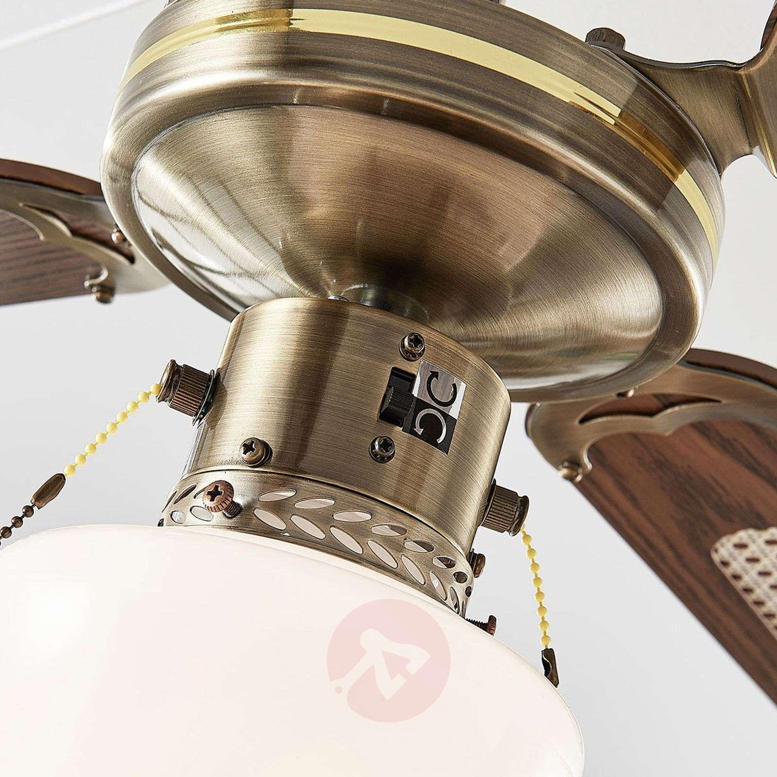 Joulin ceiling fan with light, oak-4018203-03