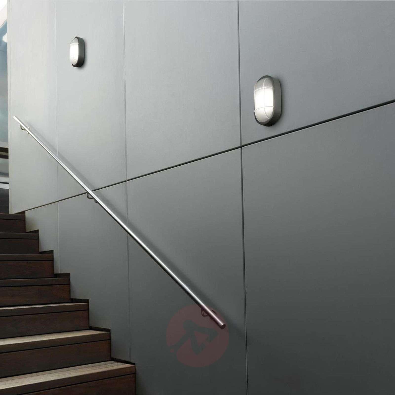 Wall Sconces Bulk: LED Bulkhead Outdoor Wall Light Turtled