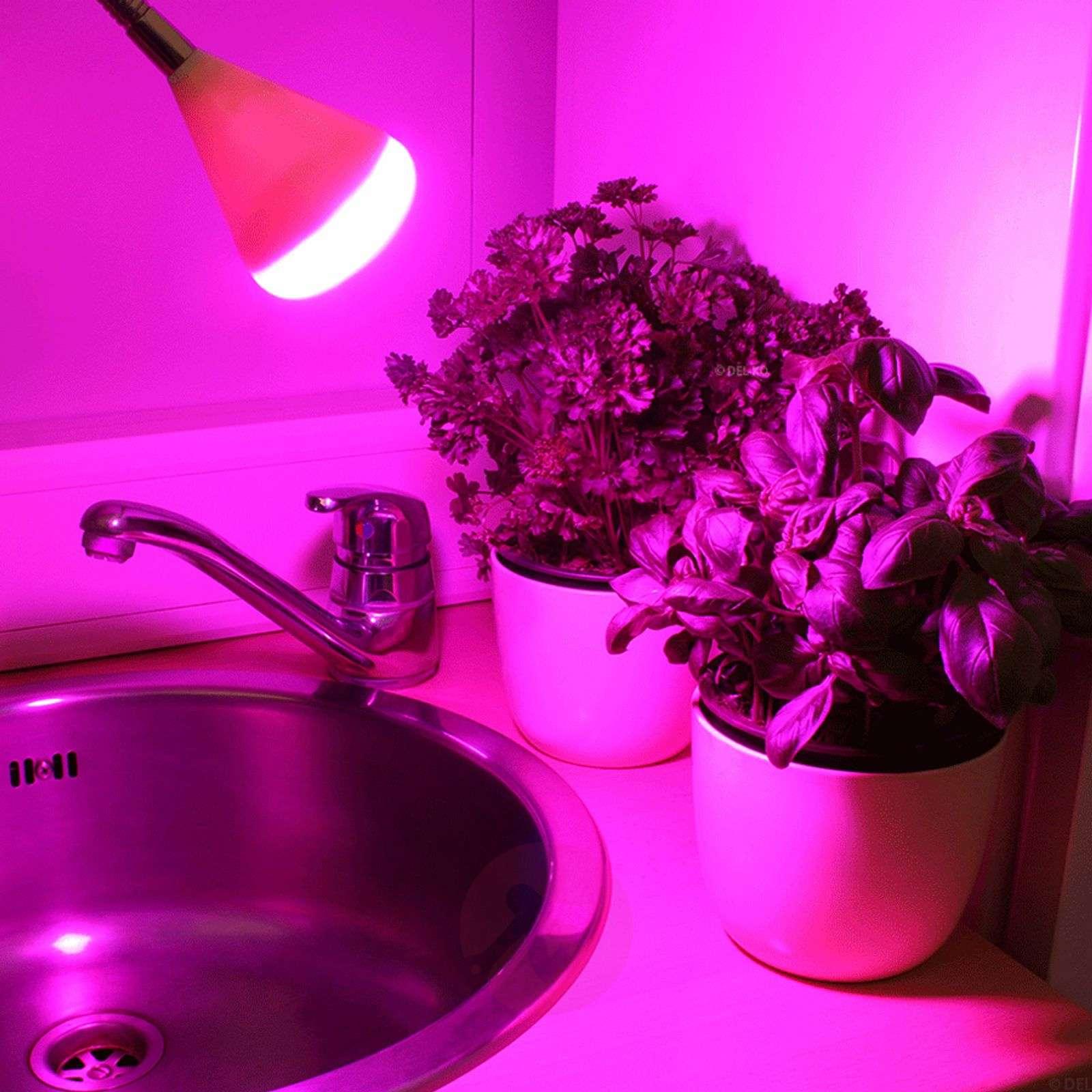LED clip-on light GoLeaf for plant lighting-2515068-02