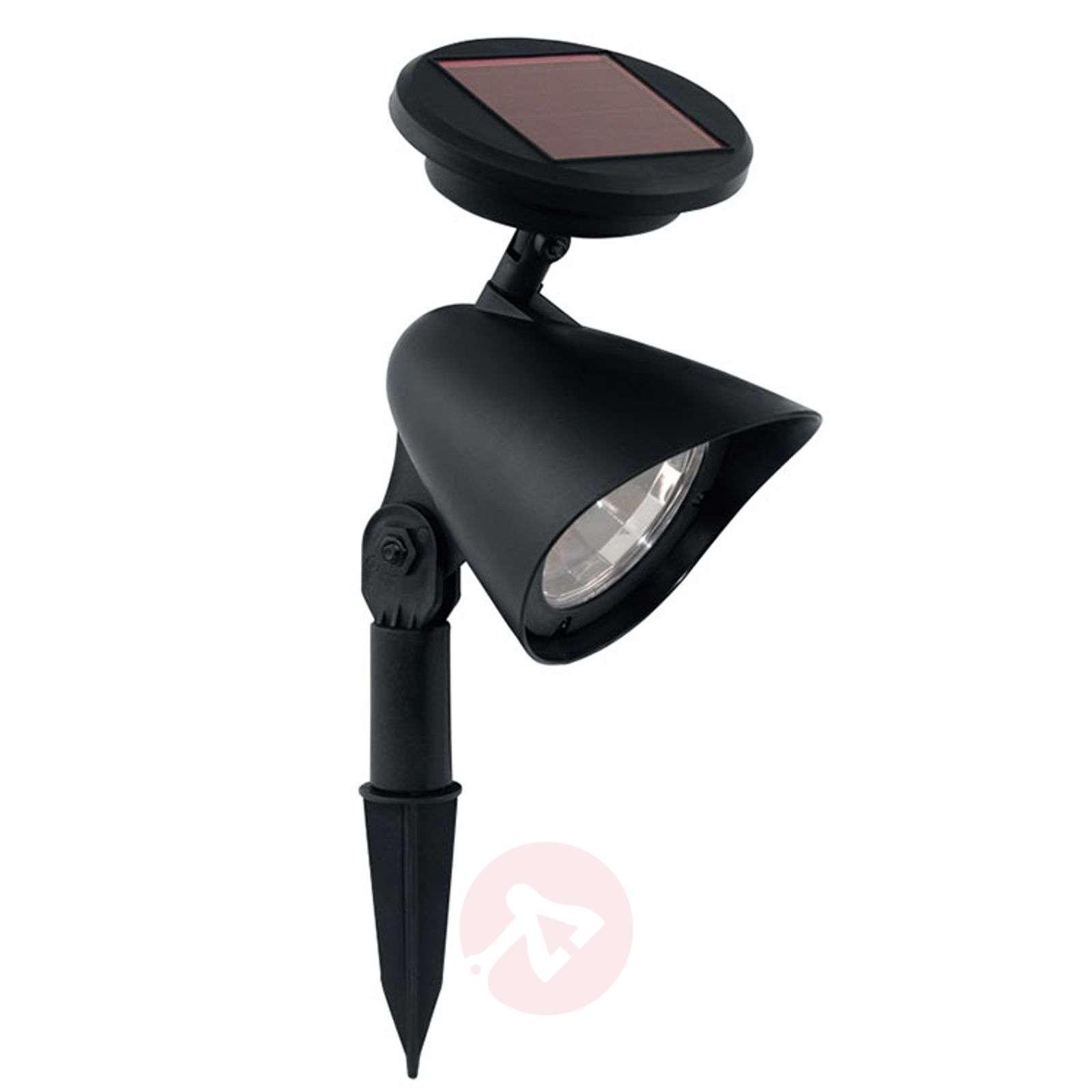 LED solar ground spike light Ludo, black | Lights.ie