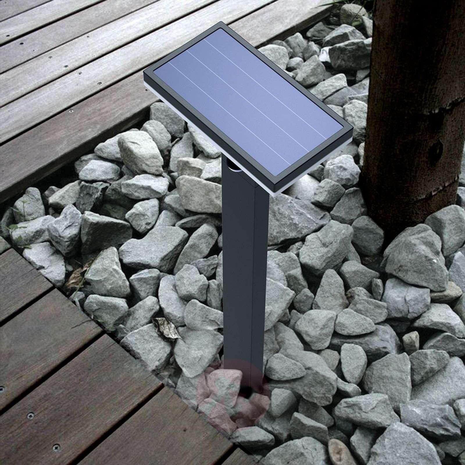 LED solar path light Josa with motion detector-9619070-09