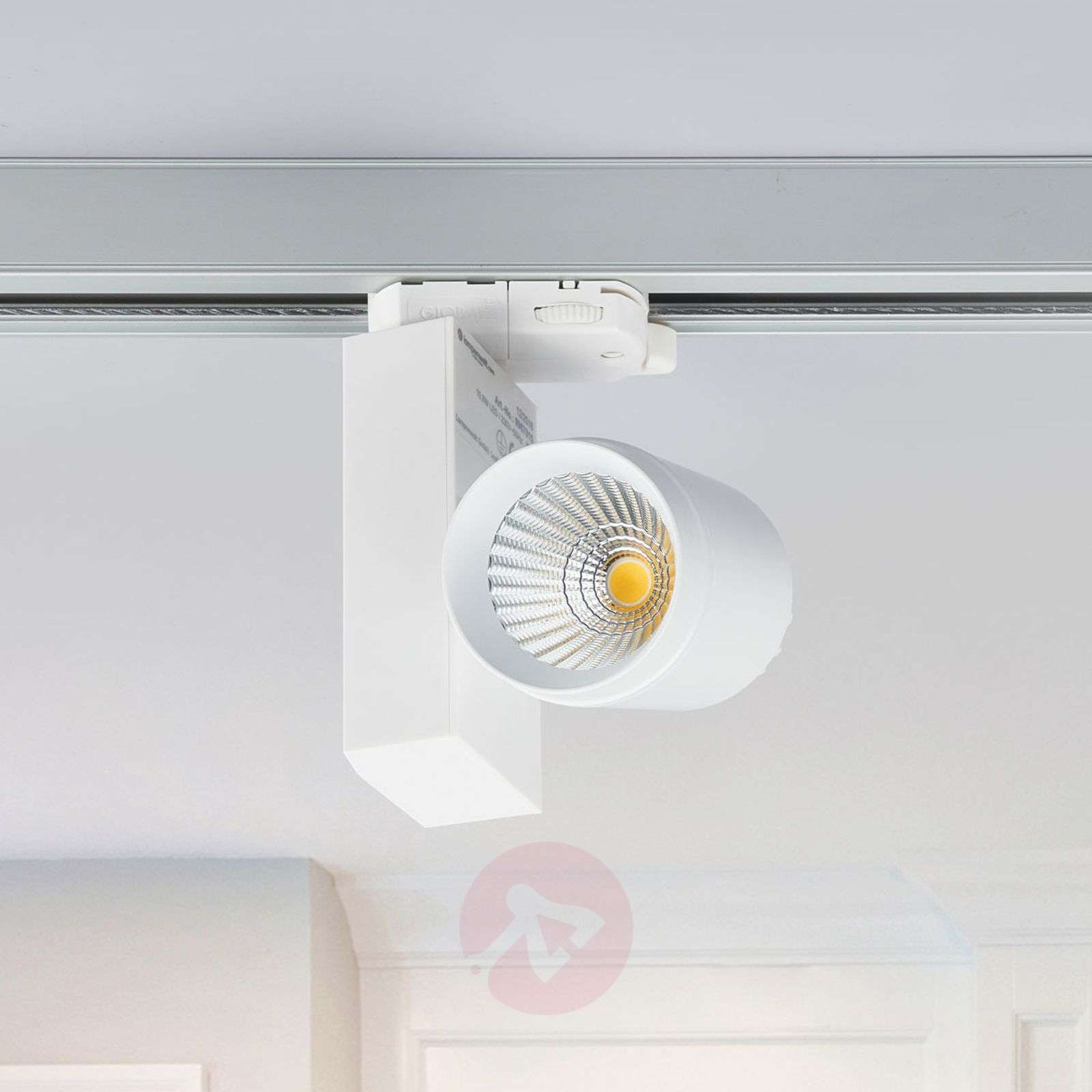 LED spotlight Niels, 3-circuit track system-9967015-02