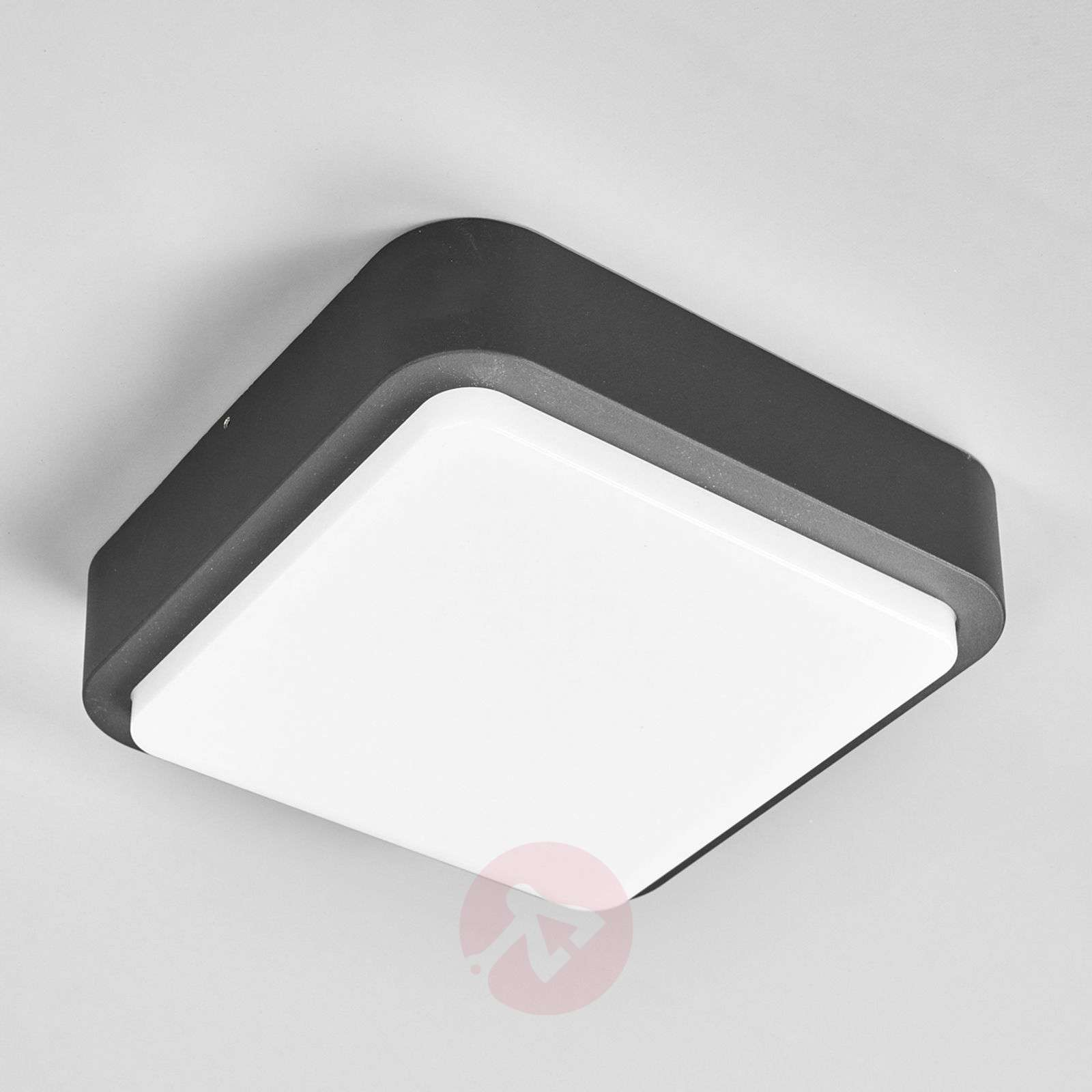 Maxine a rounded outdoor wall light with LEDs-9955003-02