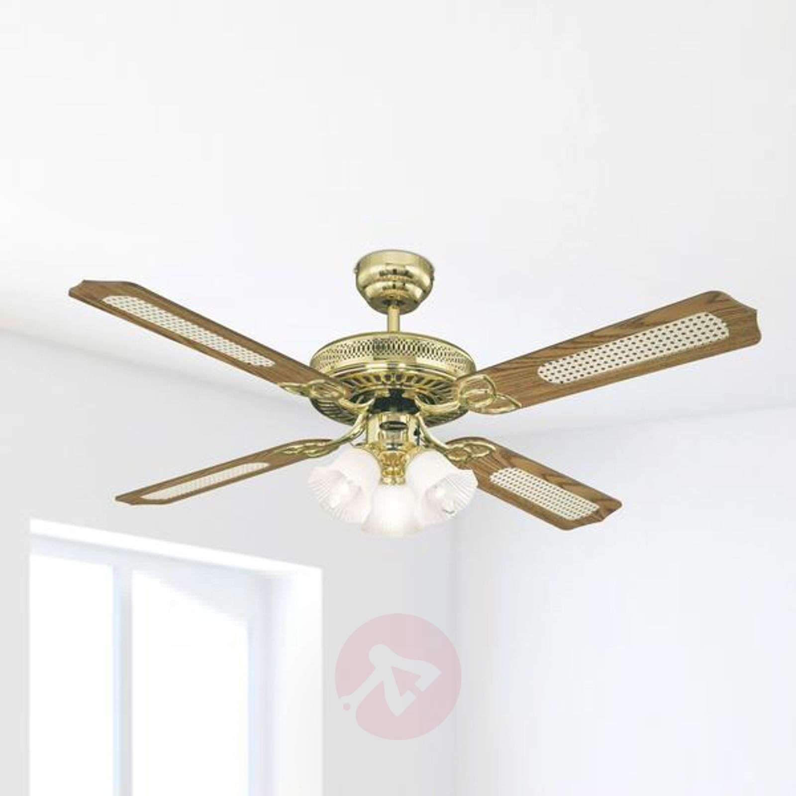 Monarch Trio ceiling fan with changeable blades-9602042-01