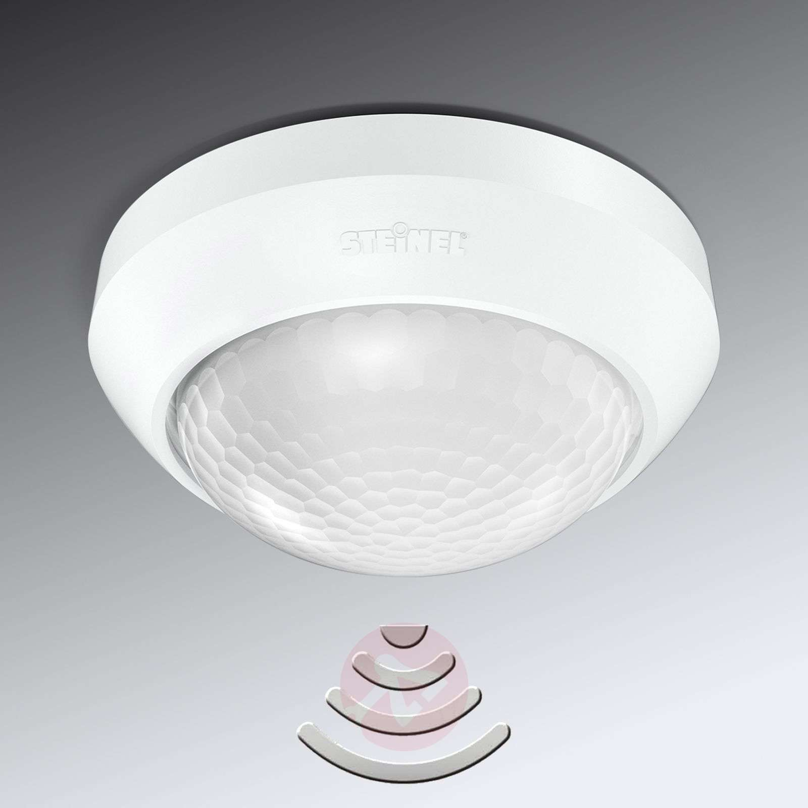 Motion detector IS 360-3 for indoors and outdoors-8505714-01