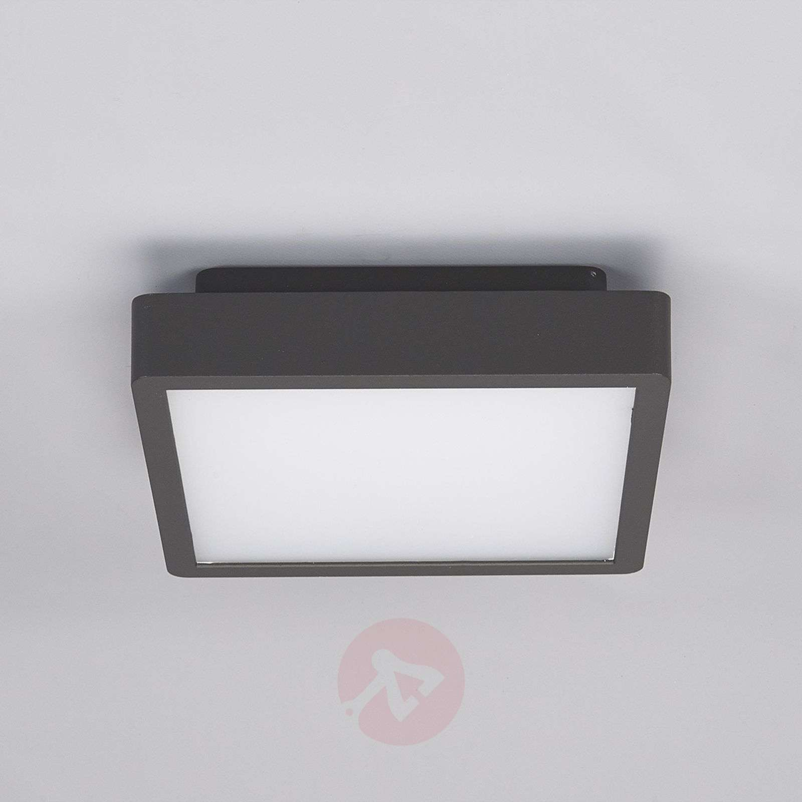 linea professional light gb i lighting lights original group cube outdoor en ceiling