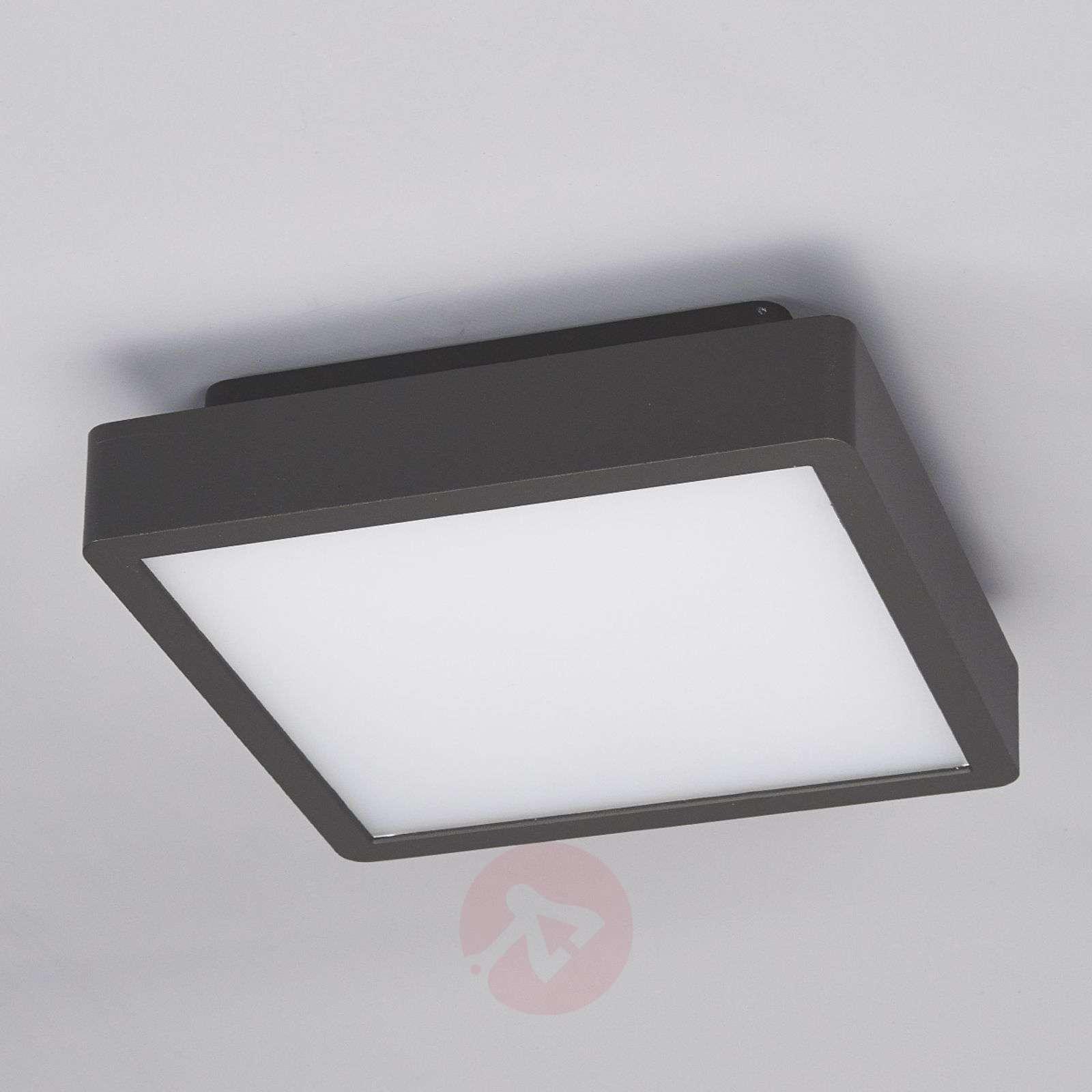 rectangular led outdoor ceiling light talea lights ie