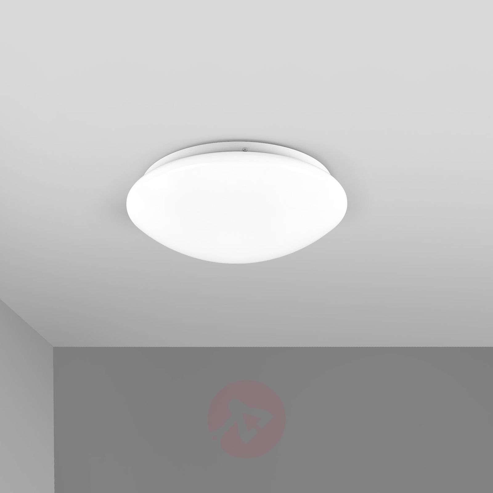 Simple LED bathroom ceiling lamp Selveta, 30 cm-9945030-01