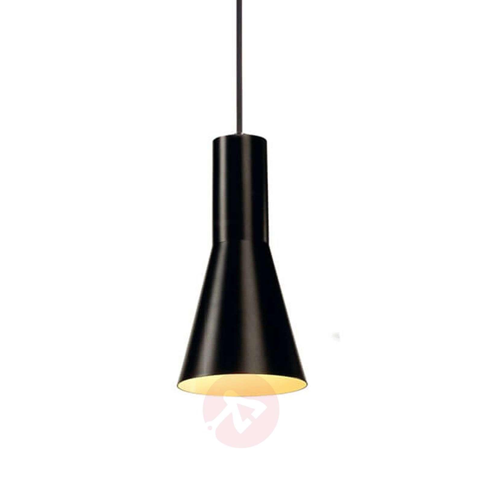 Small pendant light Phelia-5504738-01
