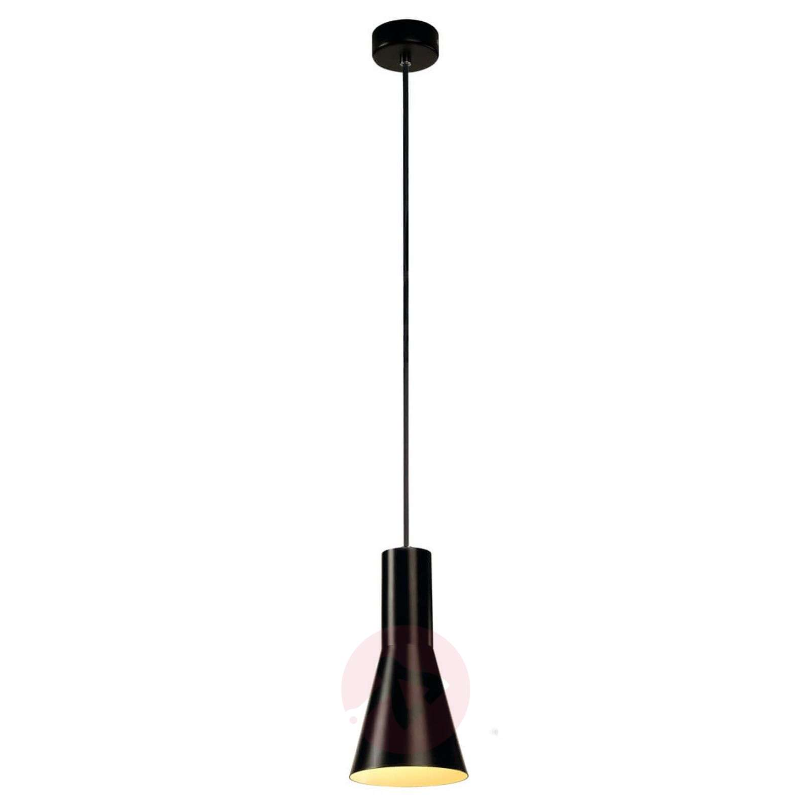 Small pendant light Phelia-5504738-01