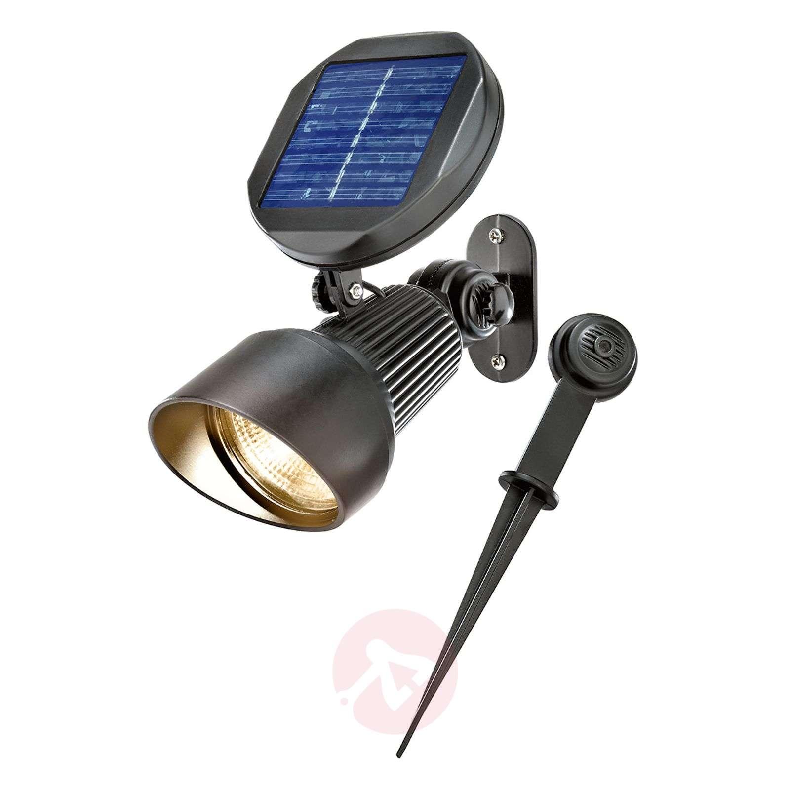 Solar light Spotlight with warm white LED lighting-3012543-01