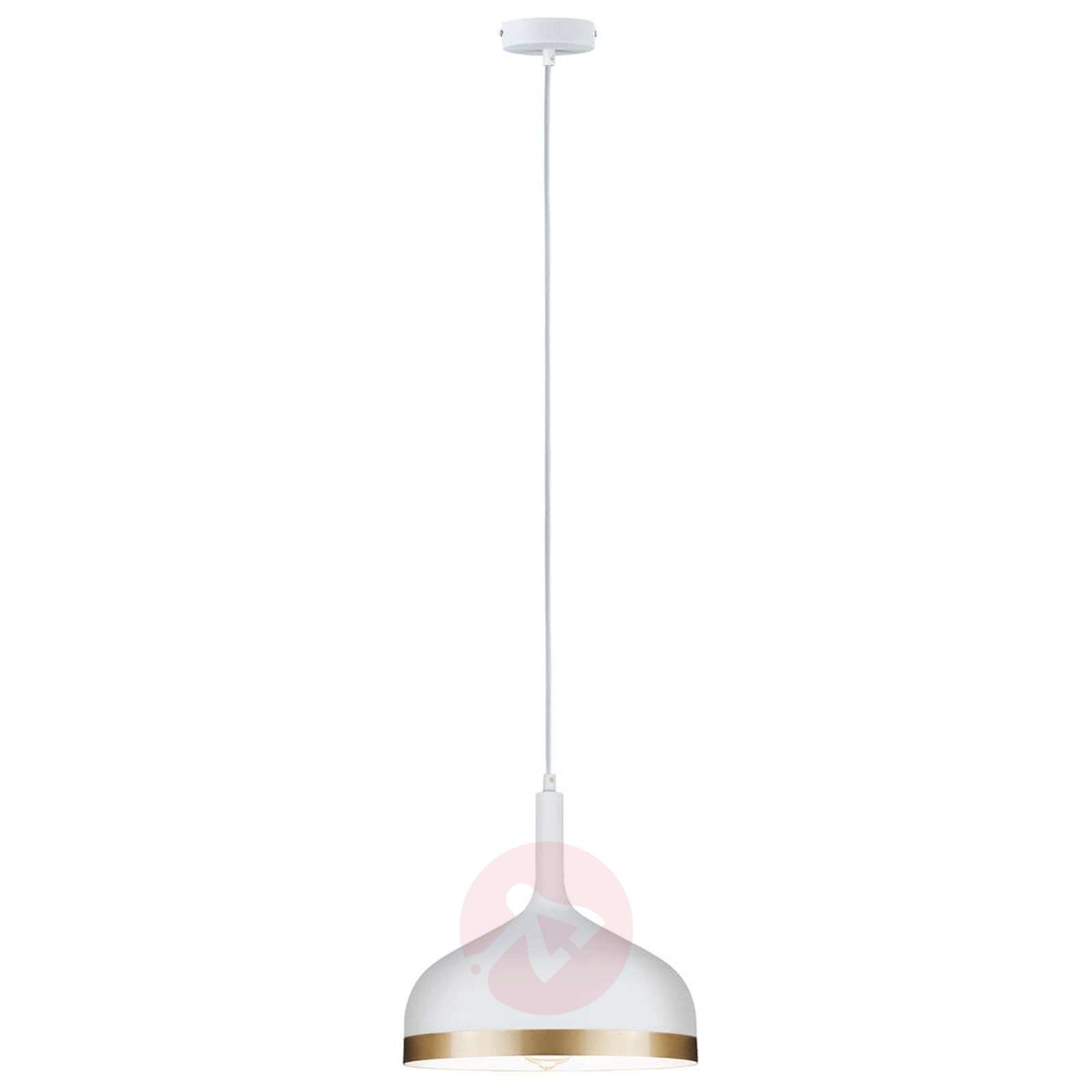 Stylish pendant light Embla-7601036-01