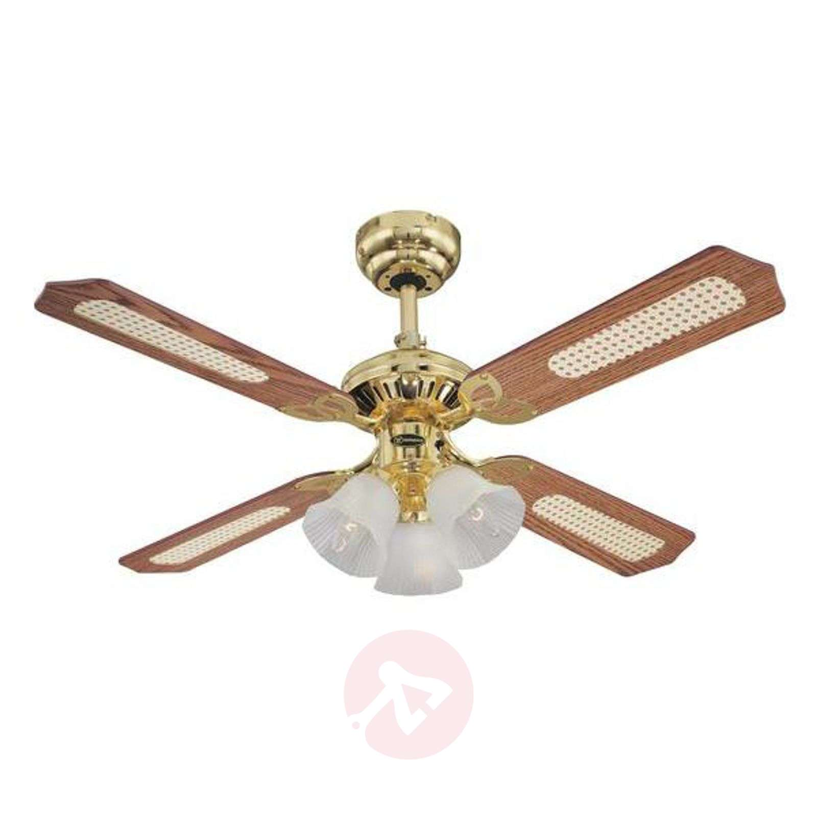 Stylish Princess Trio ceiling fan in wood-9602168-01