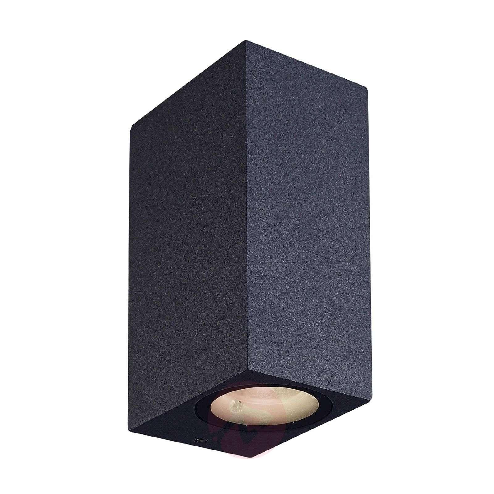 Tavi outdoor wall light with 2 Bridgelux LEDs-9616011-01