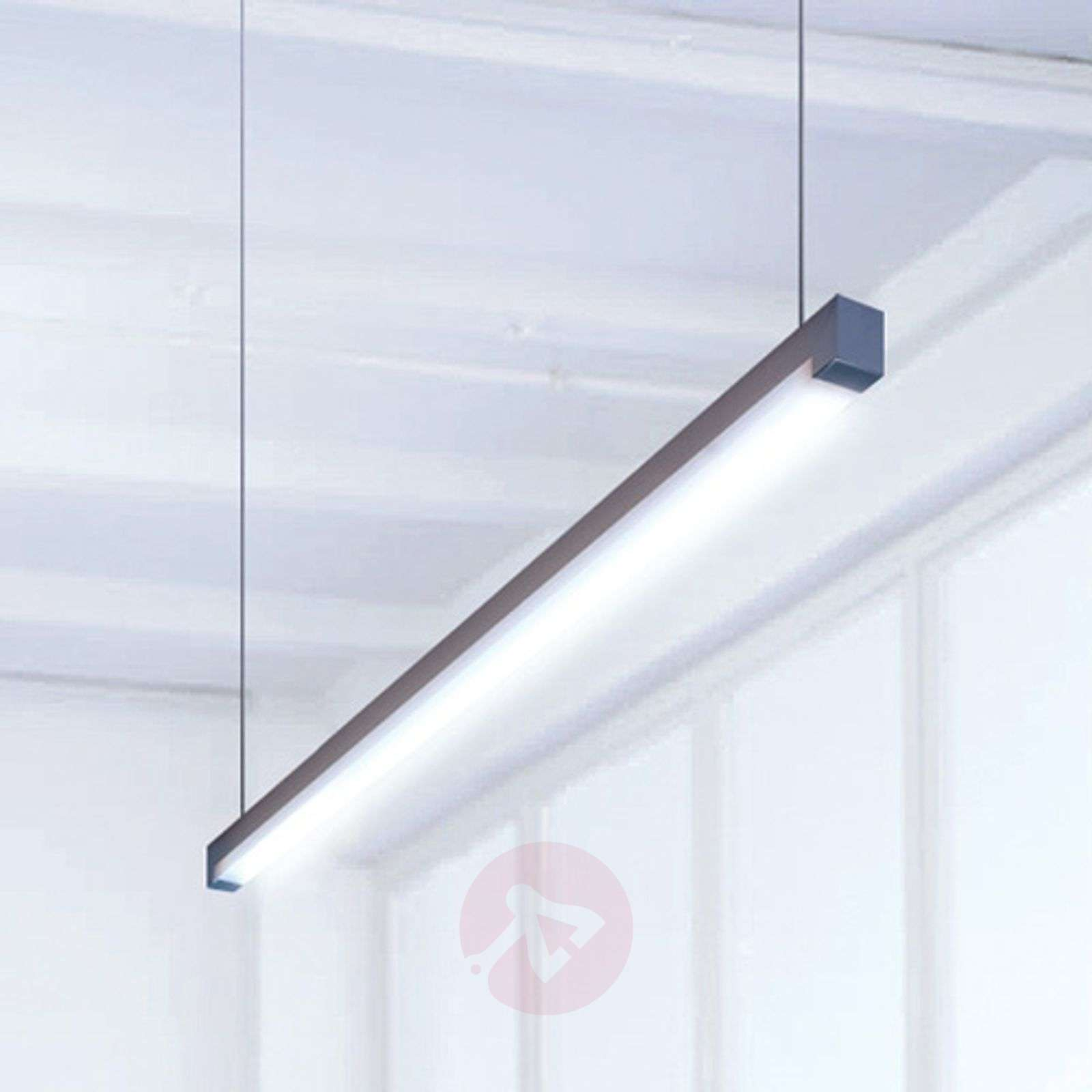 Travis-P2 cool white LED hanging light-6033459X-01