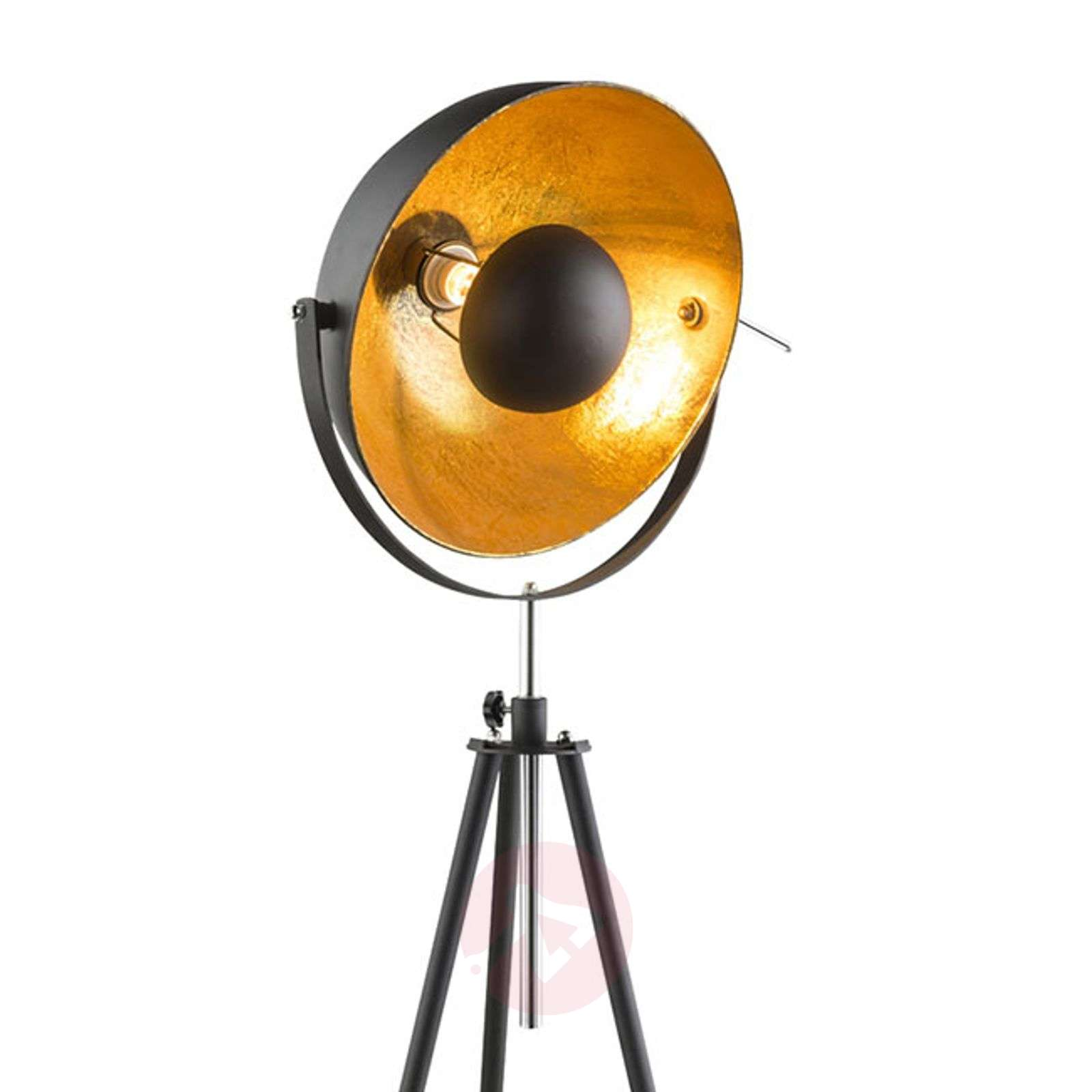 Tripod floor lamp Lenn, black and gold-4015063-01