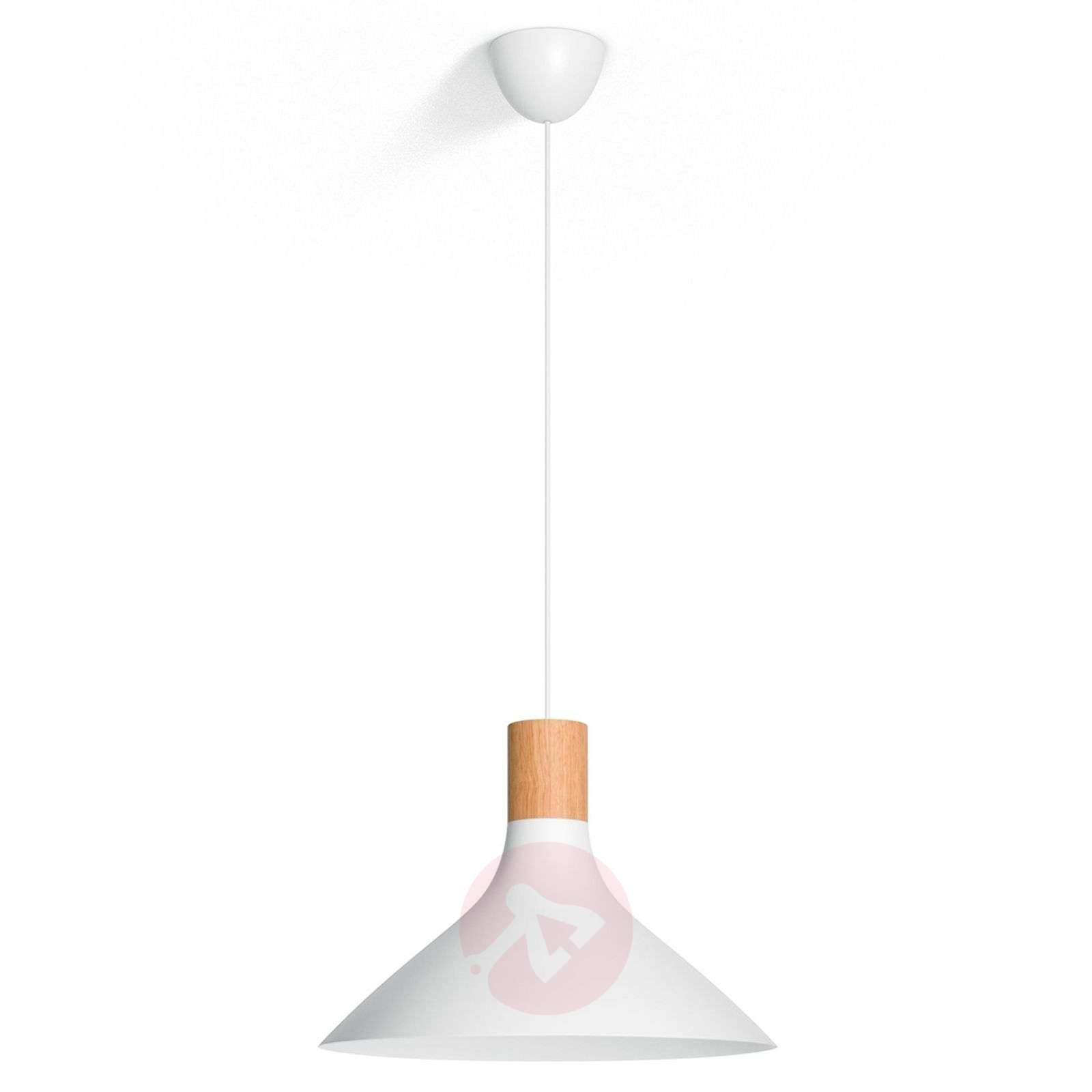 Tunnel modern pendant light with wooden detail-7531844-01