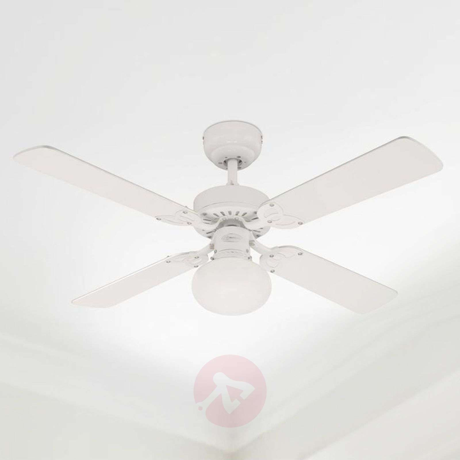 Vegas ceiling fan with light in whitepine lights vegas ceiling fan with light in whitepine 9602208 06 aloadofball Image collections
