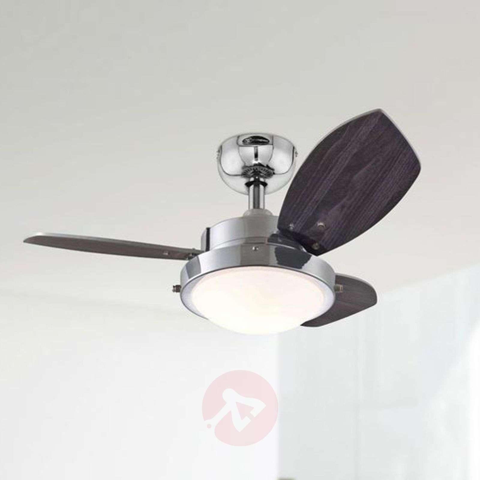 wenge ceiling fan with halogen lamp. Black Bedroom Furniture Sets. Home Design Ideas