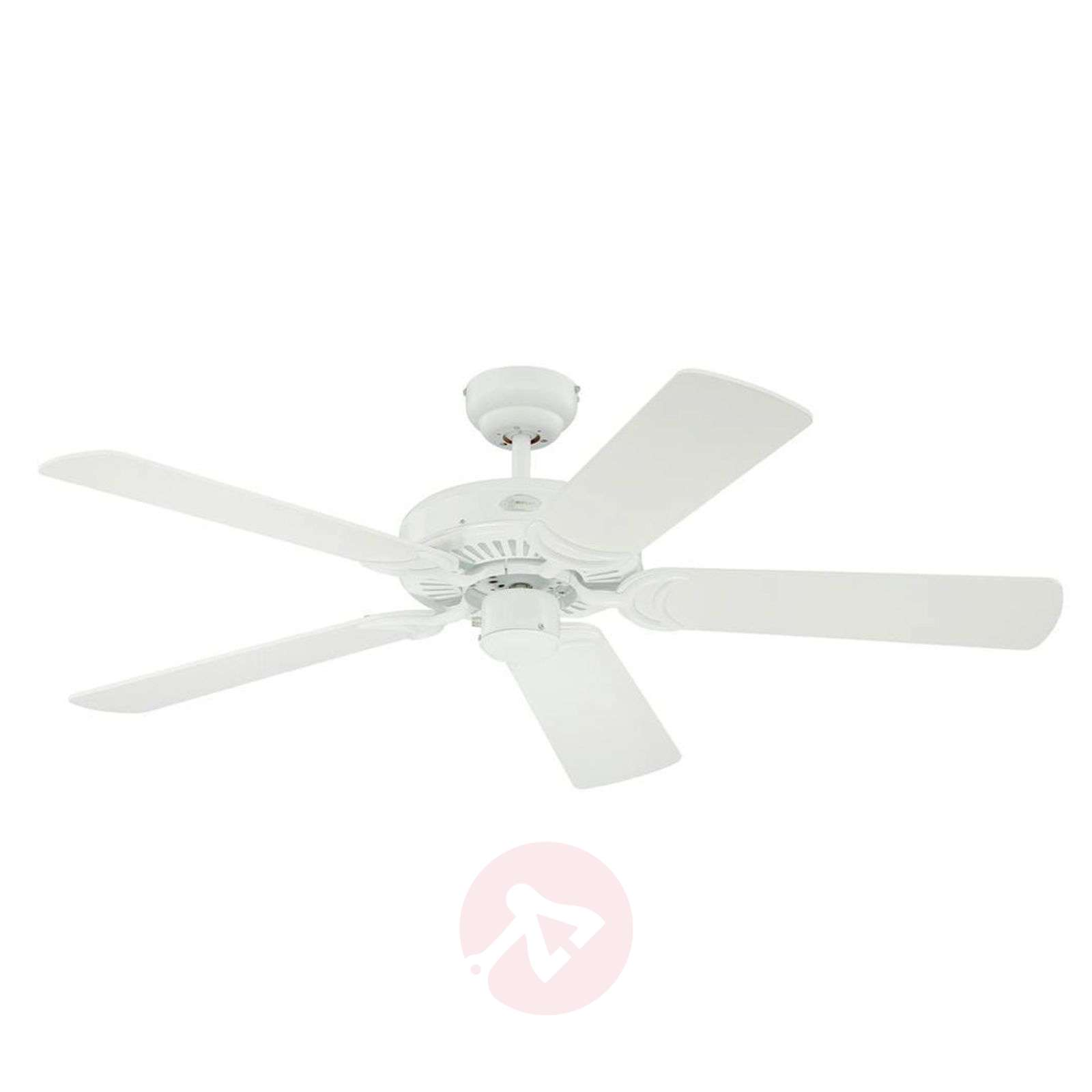 White Monarch ceiling fan-9602267-01