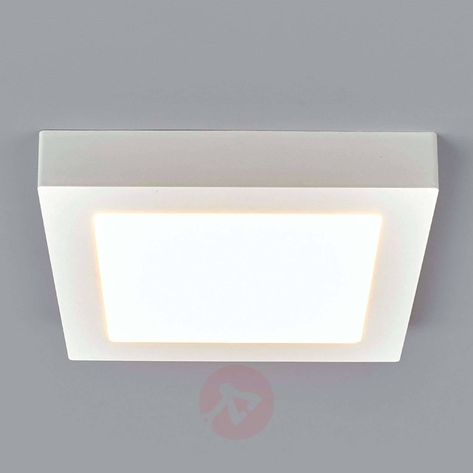 White, square LED bathroom ceiling light Rayan-9978024-011