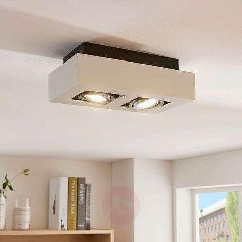 2-bulb white LED spotlight Vince