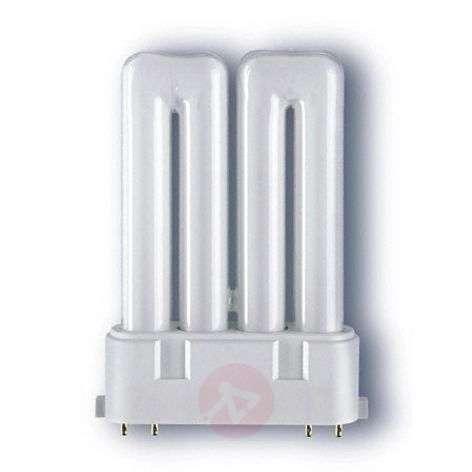2G10 compact fluorescent bulb Dulux F