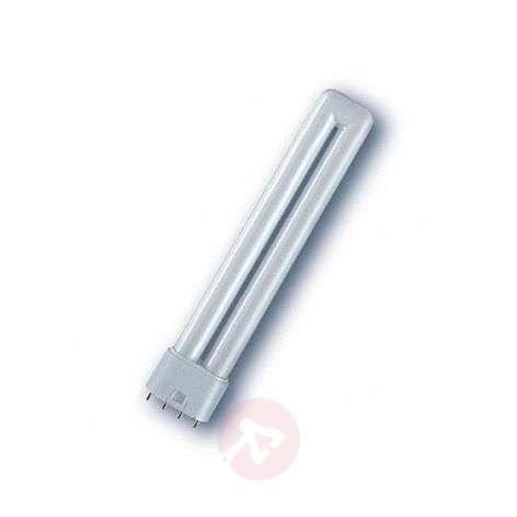 2G11 Dulux L DeLuxe compact fluorescent bulb
