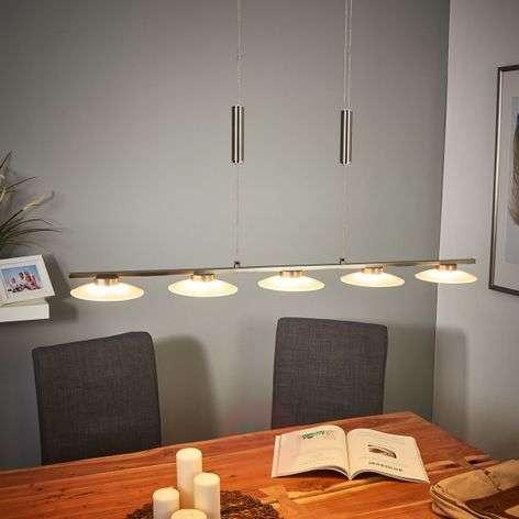 5-bulb LED pendant light Leovan