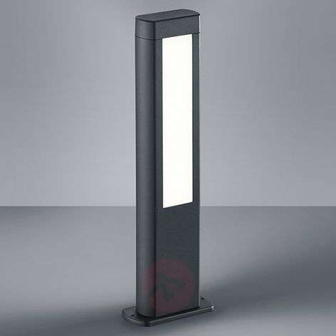 50 cm high LED pillar light Rhine-9005215-31