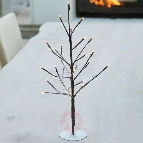 50 cm high - LED tree Filippa 50-bulb
