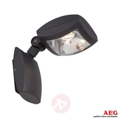 AEG Guardiano - pivotable LED outdoor spotlight