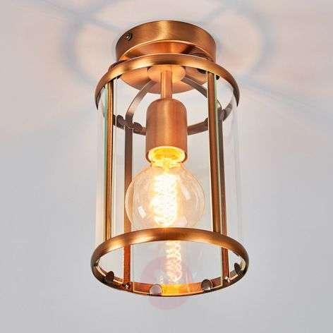 Appealing Pimpernel ceiling light