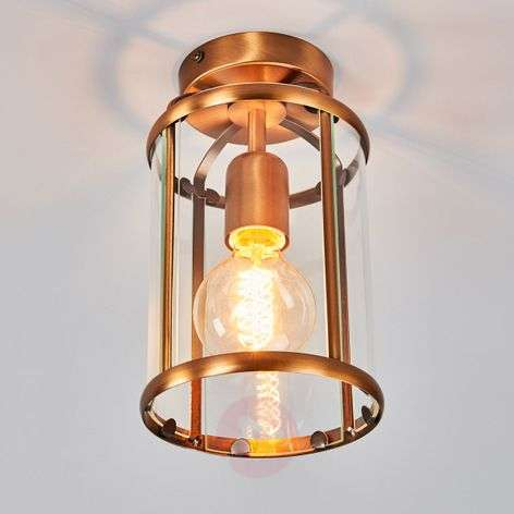 Appealing Pimpernel ceiling light-8509463-31