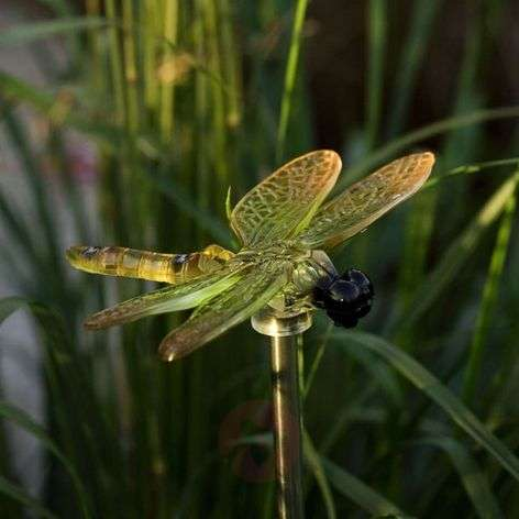 ASSISI solar light Dragonfly in a four-piece set